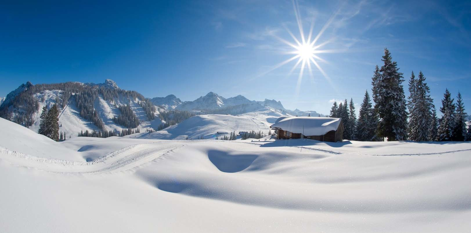 Winter holidays  in Salzburger Saalachtal